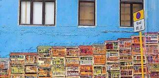Hong Kong Street Art or Graffiti