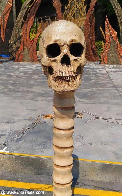 Human Skull at Ocean Park