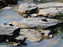 Shivalinga's carved on rocks in Shalmala river at Sahasralinga, Sirsi