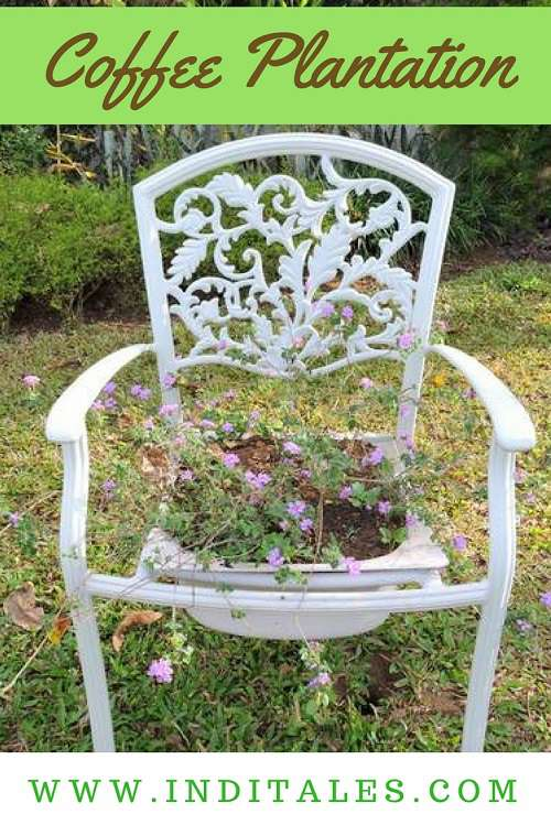 Chair with a Flower Pot