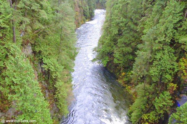 Capilano River - Vancouver BC