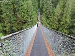 Capilano Suspension Bridge Park - Vancouver BC