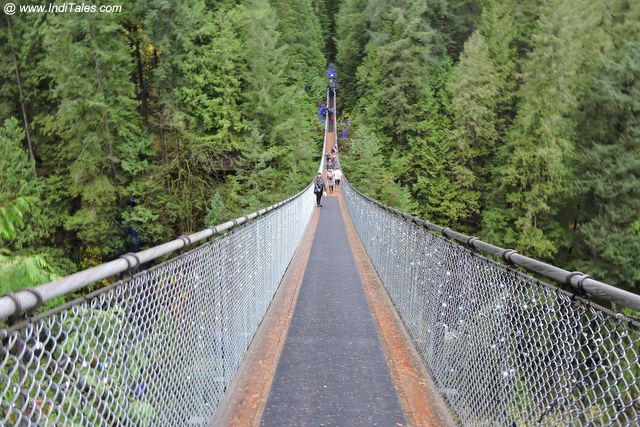 Capilano Suspension Bridge Park - Vancouver BC