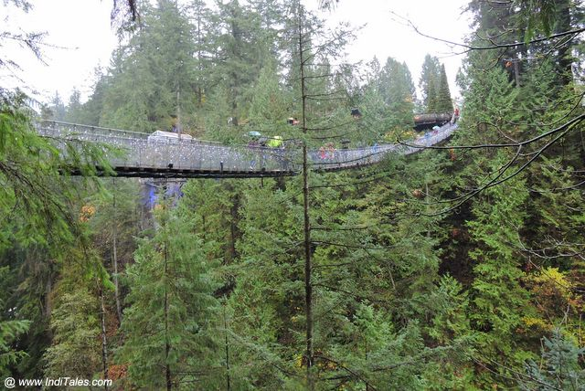 Capilano Suspension Bridge on Capilano River