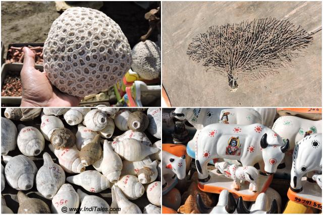 Things you can buy at Beyt Dwarka – Corals, Conch Shells, Toys and Indrajaal