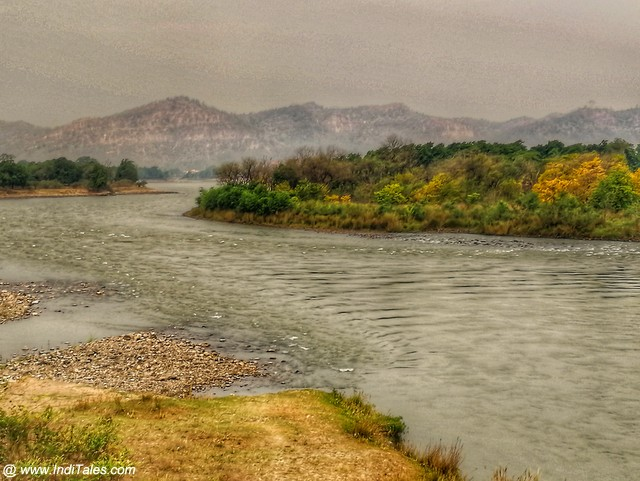 Banks of Ganga close to Rajaji National Park