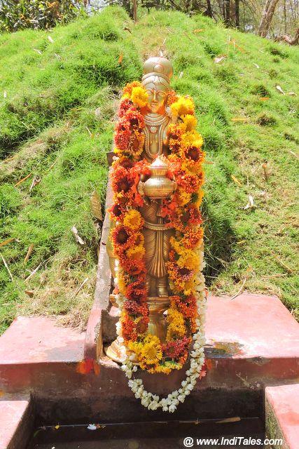 Kaveri Amma Idol