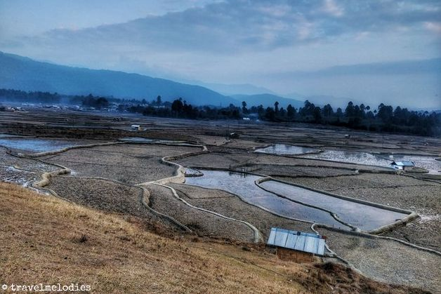 Landscape view of the Ziro Valley