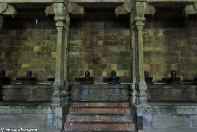 1008 Shivalingams at Ekambaranathar Temple Kanchipuram