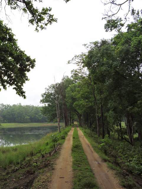 Jungle Safari route at Satpura National Park