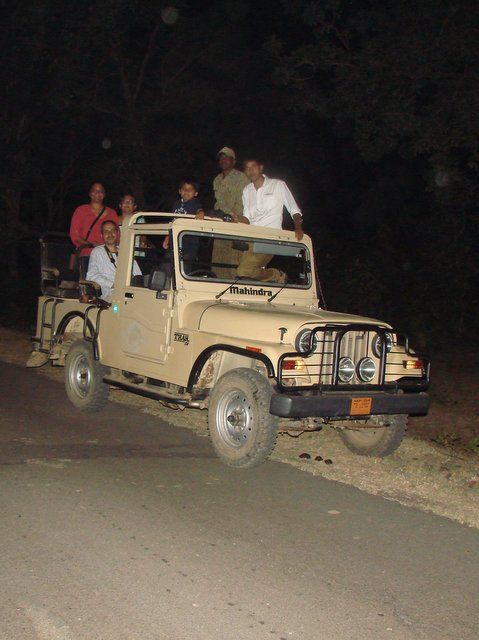 On a Night Safari at Satpura