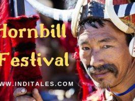 Celebrating the Tribal Culture of Nagaland - Hornbill Festival