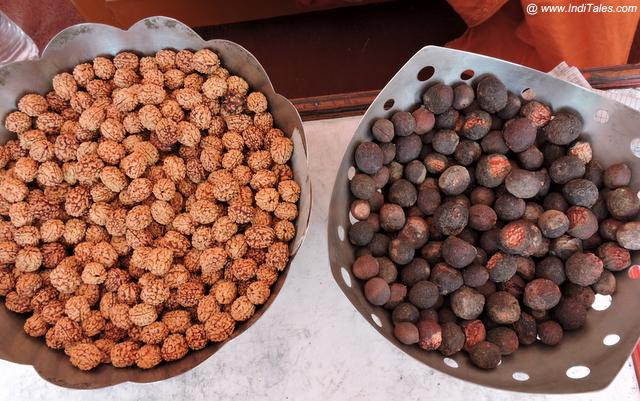 Rudraksha Seeds - Popular Rishikesh Souvenirs
