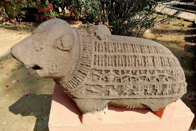Mahavaraha at Allahabad Museum