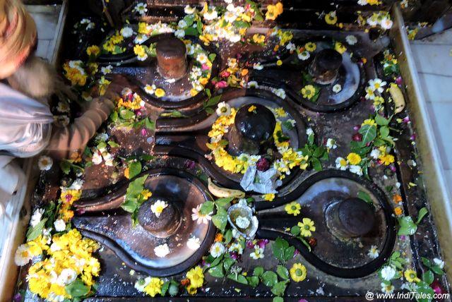 Shivalingas at Chakreshwar Mahadev Mandir near Mansi Ganga - Braj Bhumi