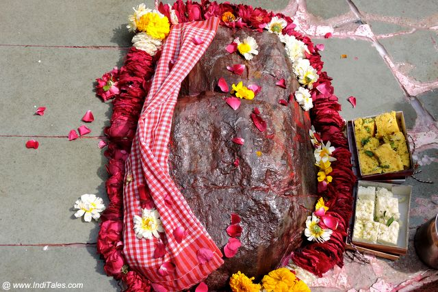 Govardhan Rocks being worshipped