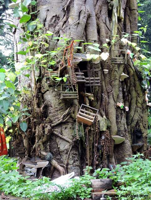 nails and cradles on a temple tree