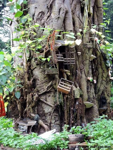 मंदिर के पेड़ में गड़े कील और लटकते झूले
