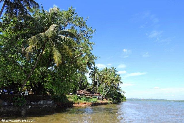 Mandovi River - Divar Island