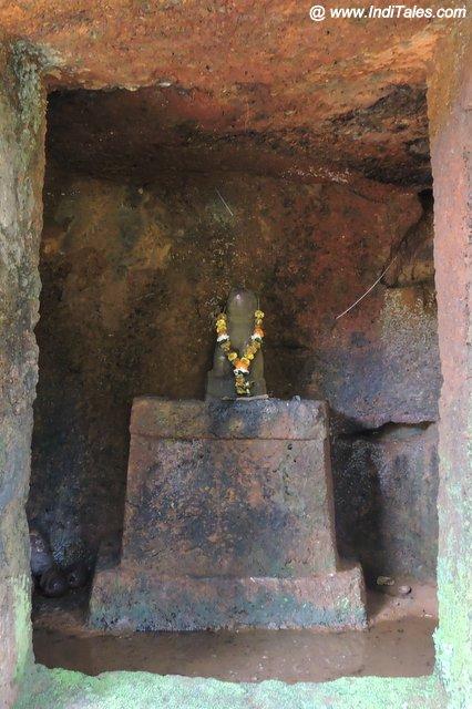 Tiger Murti inside Jain Cave near Saptakoteshwar Temple