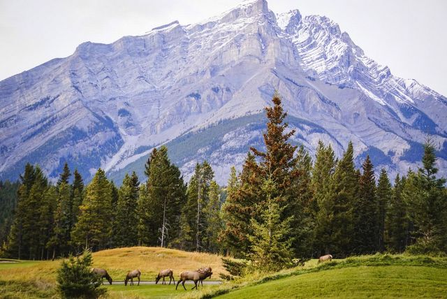 12 Best Places To See In The Canadian Rockies