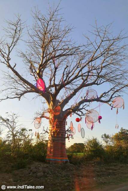 Decorated trees at the Mandu Festival