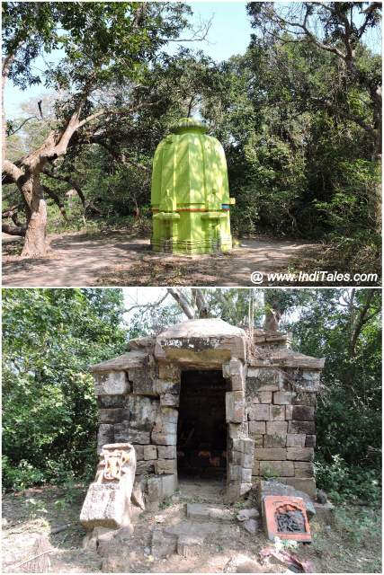 A 5th century Shiva Temple amidst the mangrove jungles of Bhitarkanika National Park