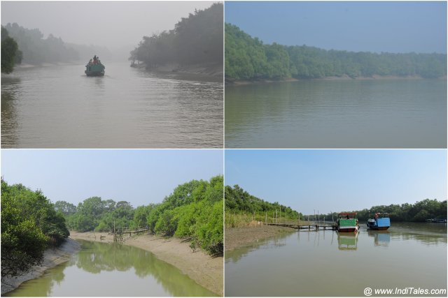 Collage of landscape scenes during a boat ride at Bhitarkanika National Park
