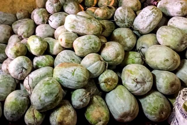 Pile of Ash Gourd fruit
