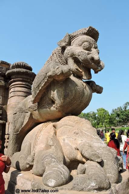 हाथी को दबोचे हुए सिंह