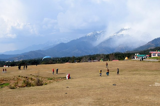 Paragliding landing point at Bir