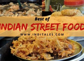 Best Indian Street Foods
