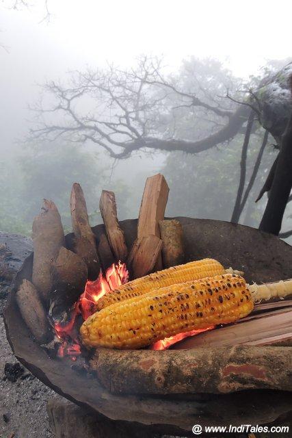 Bhutta or Roasted Cob Corn
