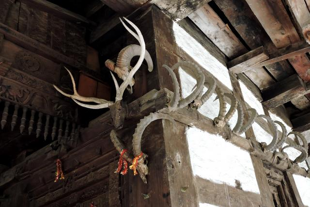 Horns hanging at Hidimba Temple