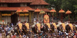 Decorated Elephants parade at Vadakkumnathan Temple Pooram festival