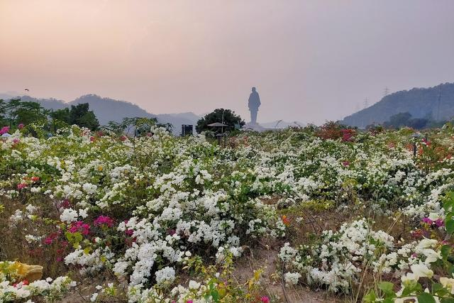 Landscape view of the Valley of Flowers at Kevadia, Gujarat