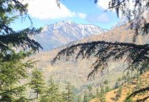 Landscape view of the Tirthan valley