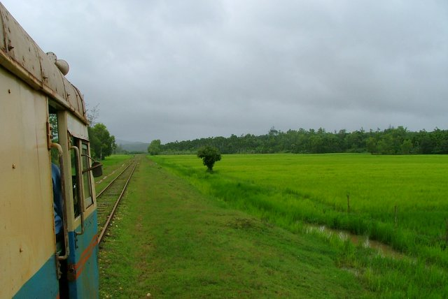 Memorable journeys in the lush green paddy fields of the hinterlands