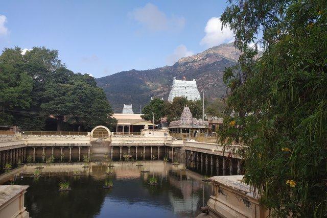 Landscape view of Arunachaleshwar Temple and the Arunachaleshwar hill