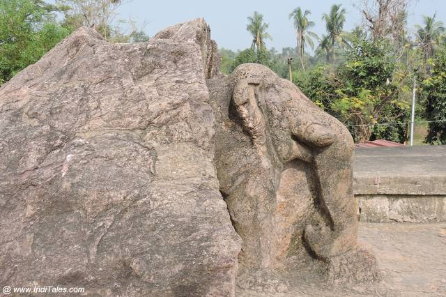 Elephant sculpture carved out of a rock at Dhauli, Bhubaneshwar